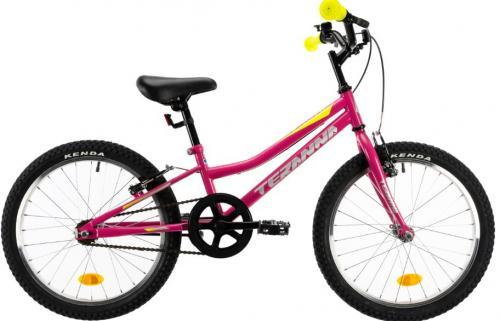 Bicicleta copii Dhs Terrana 2004 roz 20 inch - Biciclete copii  -