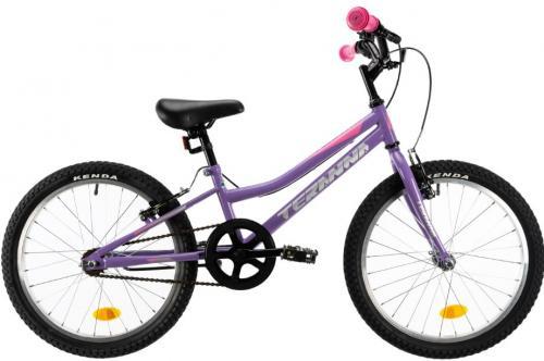Bicicleta copii Dhs Terrana 2004 violet 20 inch - Biciclete copii  -
