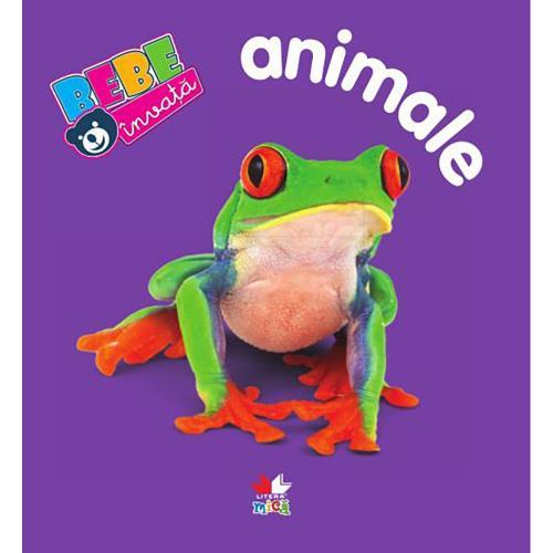 Carte Editura Litera - Animale Bebe invata Ed a V-a - Carti pentru copii -