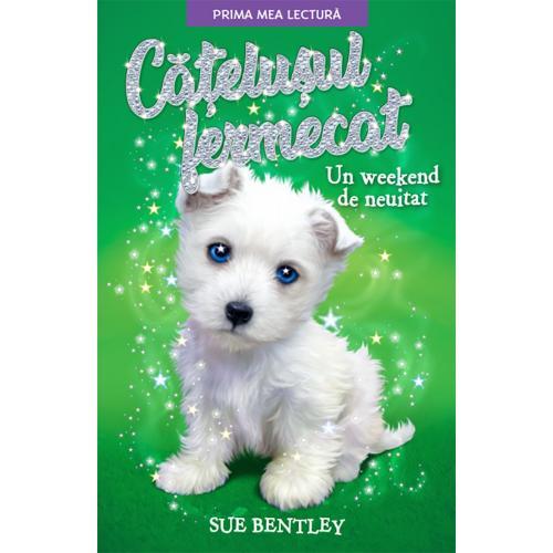 Carte Editura Litera - Catelusul fermecat Un weekend de neuitat - Sue Bentley - Carti pentru copii -