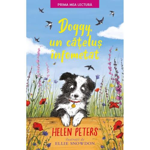 Carte Editura Litera – Doggy – un catelus infometat – Helen Peters