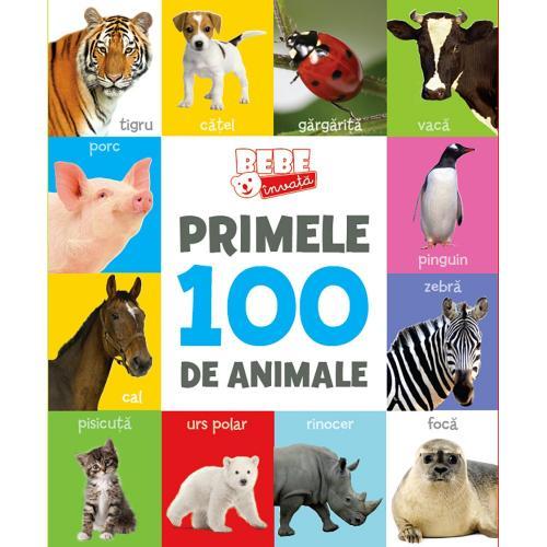 Carte Editura Litera - Primele 100 de animale Bebe invata - Carti pentru copii -