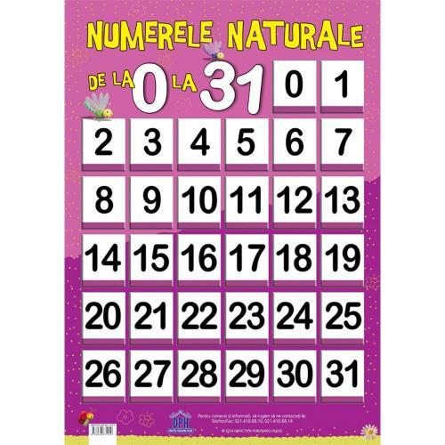 Plansa Editura DPH - Numerele naturale de la 0 la 31 - Carti pentru copii -