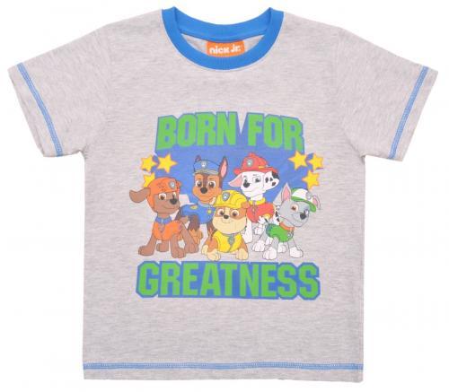 Tricou cu maneca scurta si imprimeu Paw Patrol - Gri - Imbracaminte copii - Tricouri
